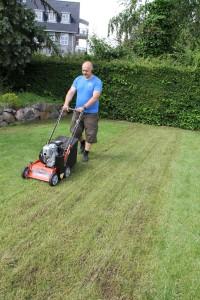 Fjerne gammel græsplæne